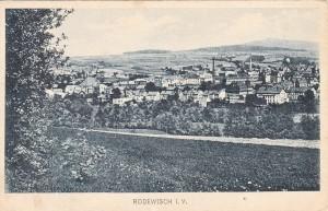 Blick auf Rodewisch 29