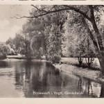 Schloßinsel 1952