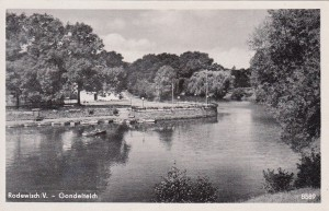 Schloßinsel 1954