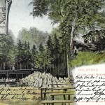 Steinberg 1904 (3)