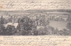 Heil- und Pflegeanstalt Untergöltzsch 1903 (1)