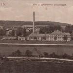 Heil- und Pflegeanstalt Untergöltzsch ca. 1915 (1)