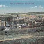 Heil- und Pflegeanstalt Untergöltzsch 1919