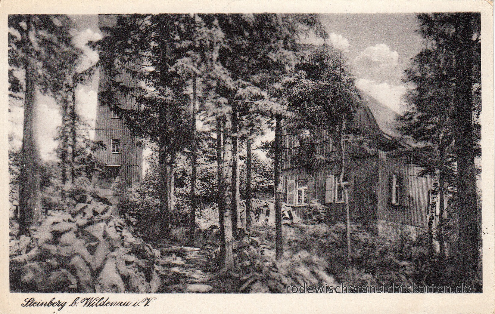 Steinberg 1957 (1)
